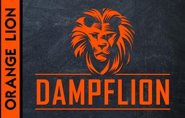 Aroma Dampflion 20ml Orange Lion
