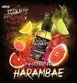 Liquid HARAMBAE 50ml - Twelve Monkeys